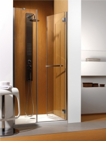 Двери для душа Carena-DWJ